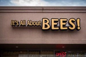All_About_Bees-1